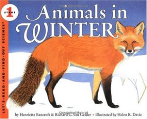 bancroft_animals-in-winter