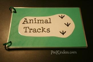 animal-tracks1w1